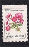 Sellos del Mundo : America : Argentina : Begonia