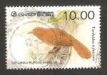 Stamps : Asia : Sri_Lanka :  ave turdoides rufescens
