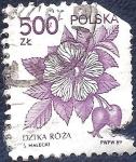 Stamps Poland -  Flor