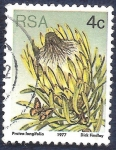 Sellos de Africa - Sudáfrica -  Flor