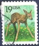 Stamps United States -  Ciervo