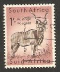 Sellos de Africa - Sudáfrica -  un ñu