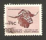 Sellos del Mundo : Africa : Sudáfrica : cabeza de zebu