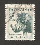 Sellos del Mundo : Africa : Sudáfrica : un jabali
