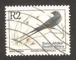 Stamps : Africa : South_Africa :  pájaro hirundo atrocaerulea, golondrina azul