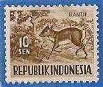 Sellos de Asia - Indonesia -  Kantjil