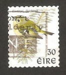 Stamps : Europe : Ireland :  ave regulus regulus, reyezuelo sencillo