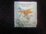 Stamps : America : Colombia :  Stanhopea Tigrina