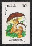 Stamps Antigua and Barbuda -  SETAS-HONGOS: 1.105.033,00-Boletus aereus