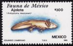 Sellos del Mundo : America : México : Fauna de México-AJOLOTE