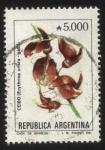 Stamps : America : Argentina :  Flor de Ceibo. Erythrina crista - galli.
