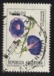 Sellos de America - Argentina -  Campanilla. Ipomoea purpurea.