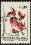 Stamps America - Argentina -  Flor de Ceibo. Erythrina crista - galli.