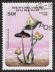 Stamps Africa - Benin -  SETAS-HONGOS: 1.114.012,01-Psilocybe zapotecorum -Dm.996.140-Mch.850-Sc.878