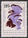 Stamps Bulgaria -  SETAS-HONGOS: 1.120.007,00-Pleurotus ostreatus