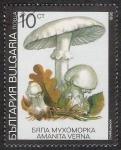 Stamps Bulgaria -  SETAS-HONGOS: 1.120.032,04-Amanita verna -Dm.991.8-Y&T.3353-Mch.3887-Sc.3598