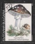 Stamps Bulgaria -  SETAS-HONGOS: 1.120.033,04-Amanita pantherina -Dm.991.9-Y&T.3354-Mch.3888-Sc.3599