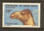 Stamps Burkina Faso -  DROMEDARIO