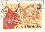 Stamps : Europe : Romania :