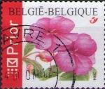 Sellos de Europa - Bélgica -