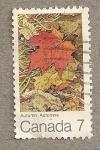 Sellos de America - Canadá -  Otoño
