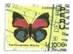 Sellos de America - Perú -  Mariposas del perú