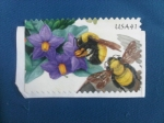 Stamps United States -  USA  41