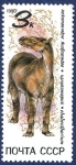 Stamps Russia -  URSS Animal prehistórico 3 NUEVO