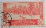 Stamps Europe - Spain -  Marruecos protectorado español