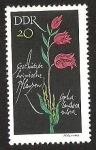Stamps Germany -  DDR - CEPHIA