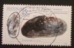 Sellos de Europa - Alemania -  flussperlmuschel