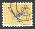 Stamps South Africa -  ave tockus flavirostris