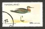 Stamps Asia - Nagaland -  un pato