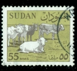 Stamps : Africa : Sudan :  Cattle