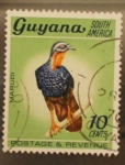 Stamps Africa - South Africa -  guyana