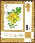 Stamps Europe - Gibraltar -  Coronilla Valentina