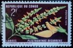 Sellos de Africa - Rep�blica del Congo -  Plectranthus decurrens