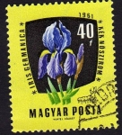 Stamps Hungary -  Yris germanica