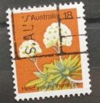 Stamps Australia -  helichrysum thomsonii