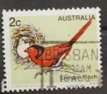 Sellos de Oceania - Australia -  crimson finch