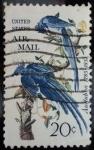 Sellos del Mundo : America : Estados_Unidos :  John James Audubon (1785-1851)