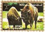 Stamps : Asia : United_Arab_Emirates :  AJMAN - Bisonte