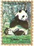 Stamps United Arab Emirates -  AJMAN - Panda