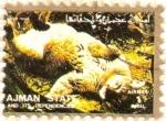 Sellos de Asia - Emiratos Árabes Unidos -  AJMAN - Puma