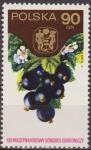 Sellos de Europa - Polonia -  Polonia 1974 Scott 2050 Sello ** Congreso Horticola Varsovia Frutas Pasas de Corinto