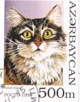 Stamps : Asia : Azerbaijan :  gato de angora