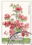 Stamps : Europe : Belgium :  florales