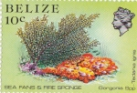 Stamps : America : Belize :  manino
