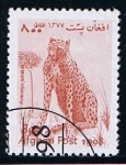 Stamps : Asia : Afghanistan :  Guepardo