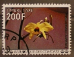 Stamps Africa - Comoros -  vanille